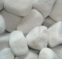 seixo-branco-tb