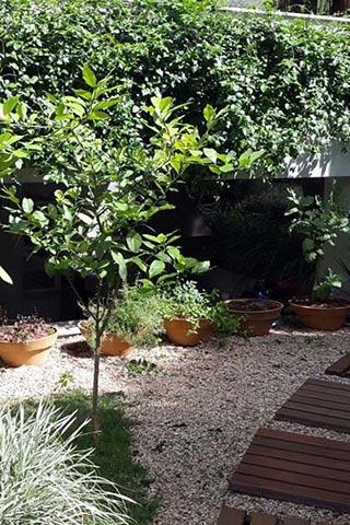 tb-JardimPetropolis7